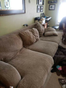 Couch pet friendly bug free home