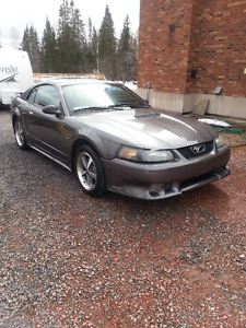 2002 Ford Mustang V6 Coupe (2 door) with new tires & Saleen kit