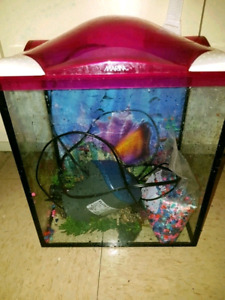 Fish Tank - approx 10 gallon