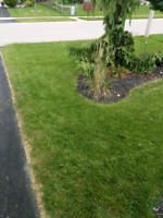 """""""Mow Time"""" lawn services serving Ingersoll and surrounding area"""