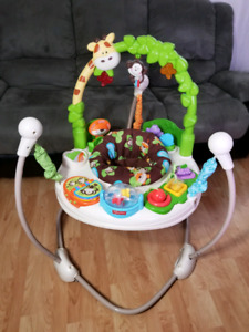 Fisher Price Baby Exersaucer / Bouncer