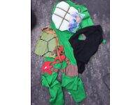 Adult teenage ninja turtle outfit fancy dress