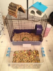 HAMSTER CAGES & ACCESSORIES FOR SALE!