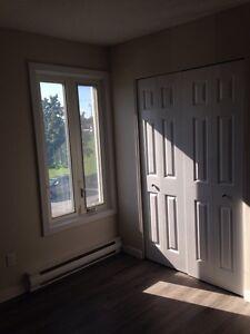 Appartement à louer Gatineau Ottawa / Gatineau Area image 5