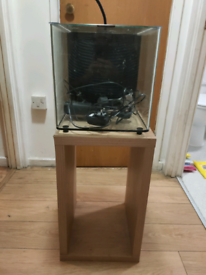 22litre fish tank, filter, LED light, heater and stand