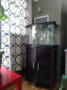20 Gallon Fish Tank with stand