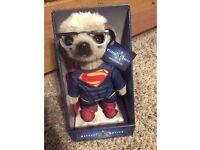 COMPARE THE MEERKAT SUPERMAN