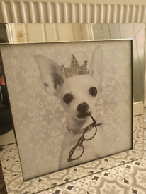 Extra large mirror framed princess chihuahua picture