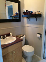 1 Bedroom 4-6 Month Sublet - $950