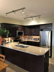 Condo for rent - BEAUTIFUL VIEW OF CENTENNIAL PARK