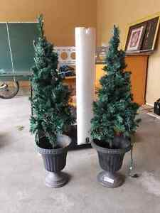 Whit lighted tree urns  4' high