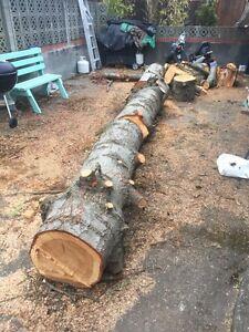 Firewood Douglas Fir