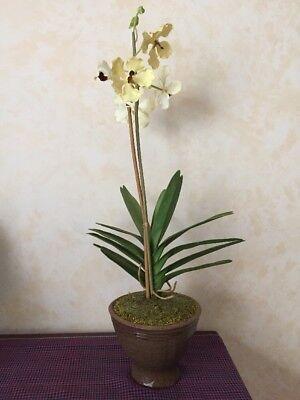 Artificial Phalaenopsis Orchid Flower in Ceramic Pot Indoor Decoration Plant 29