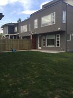 Fence, decks, sod, weed remover, retaining wall etc