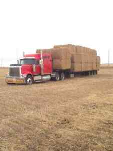Hay/Straw hauling