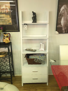Functional Ladder Bookcase