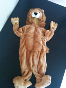 Super Cute Lion Costume for Boy or Girl, size 2