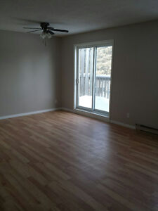 Nice, bright two-bedroom apartment in Huntsville available Jan.1
