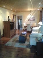 Spectacular 3 Bedroom Apartment in Old South