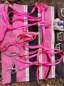 Pink western set Kawartha Lakes Peterborough Area image 1