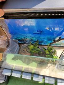 Aquanel tropical fish tank 105ltr