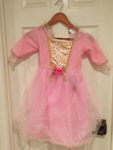 Cute princess gown  for dress up or Halloween  Kitchener / Waterloo Kitchener Area image 1