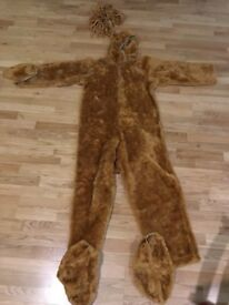 Lion/bear costume