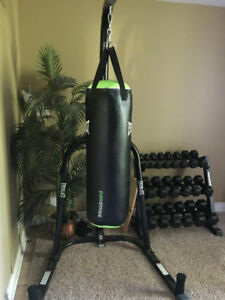 Everlast Boxing Stand and Everstrike 70lb Boxing bag