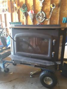 Recency wood fireplace insert