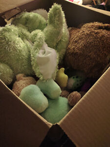 Box of stuffed animals gret condition 10$ for all