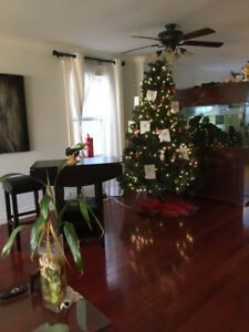 Fully furnished room available in Larry Uteck area