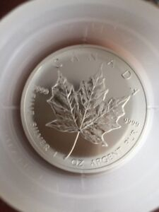 1 oz. pure silver maple coins from mint tube