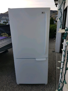 Fridge with bottom freezer