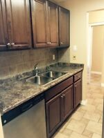 White Oaks - Renovated 2 Bdrm Condo - Available January 1st