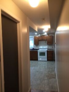 Newly Renovated One Bedroom Apartment in Airport Heights St. John's Newfoundland image 6