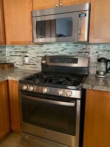 Kitchen Appliances (Fridge, Gas Range, Microwave, Hood Fan, DW)