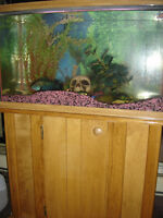 30 gal. Fish Tank with Stand