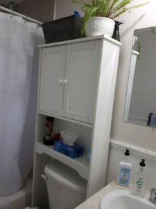 Over the toilet shelf/storage
