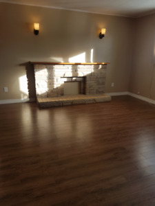 2 Bedroom Basement Apartment Available February 1st