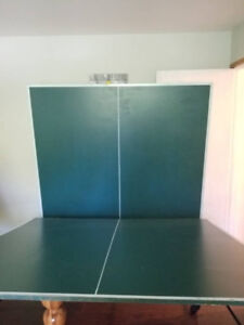 Ping Pong/Beer Pong/Table Tennis Table