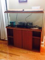 55 gallon tank and stand, in excellent condition