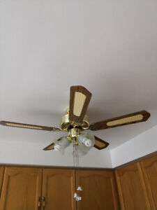 Electric Ceiling Fan with lights