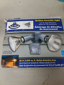 Motion Security Double Light Energy Star 110 degrees