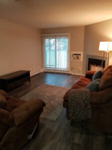 Fully renovated 1 bedroom condo in Kingsbury Gardens
