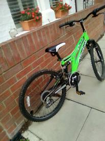 Reebok montage bike