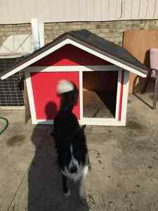 XL Insulated Dog House Windsor Region Ontario image 1