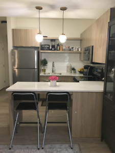 Brand New 2 Bedroom Basement Suite - Queen Mary Park