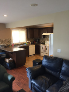 1 BR suite available Aug 1! $975 all inclusive