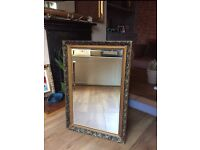Ornate gold large frame wall mirrow
