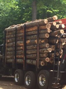 Clean, quality hardwood firewood logs